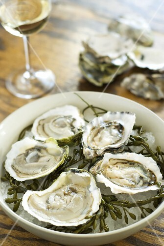 Fresh oysters with seaweed in bowl, glass of white wine