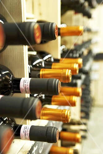 Wine in rack