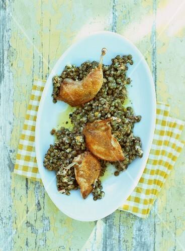 Lentil salad with quail