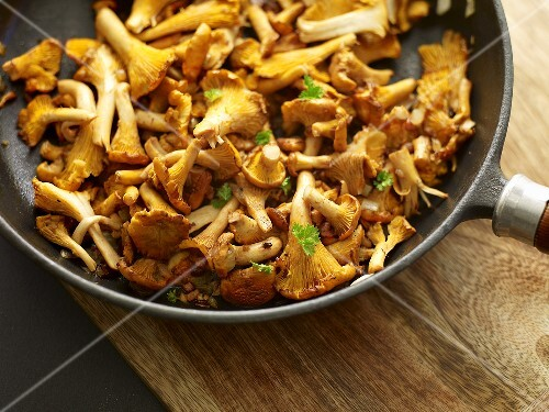 Chanterelle mushrooms with parsley in a pan