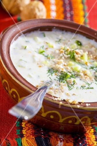 Tarator (Cold yoghurt & cucumber soup with walnuts, Bulgaria)