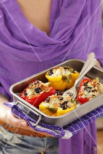 Gefüllte Paprika Mit Reis Getrockneten Bilder Kaufen 384661