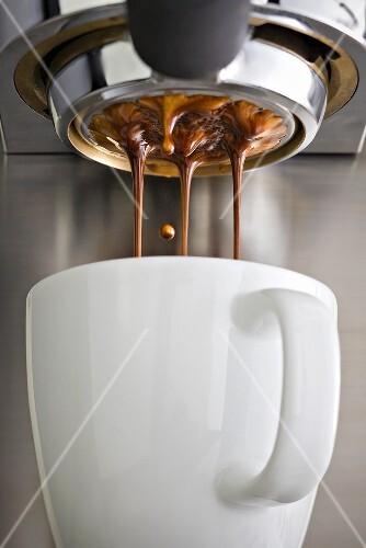 Fresh coffee running through a filter