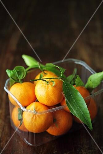 Mandarinen mit Blättern in einer Plastikschale