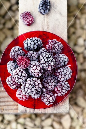 Frozen blackberries on a red plate