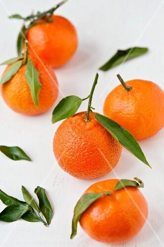 Mehrere Tangerinen mit Blättern