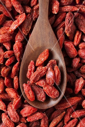 Dried goji berries on wooden spoon