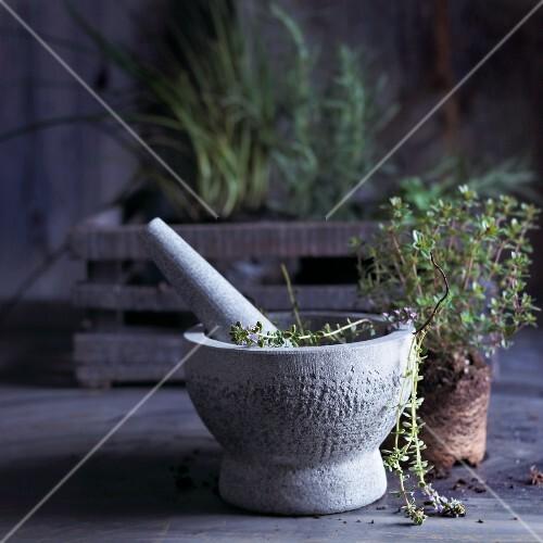 Frischer Thymian im Mörser vor Kräuterkiste