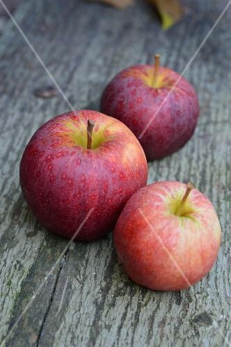 Three Jonagold apples