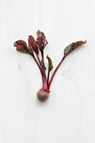 Beetroot bulb with leaves