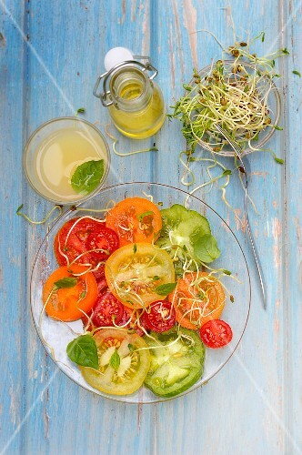 Multicolored tomato and lentil sprout salad