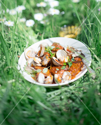 Pork and cockle stew in tomato sauce in the grass outdoors