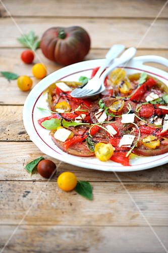 Tomato and pepper carpaccio wiih parmesan flakes