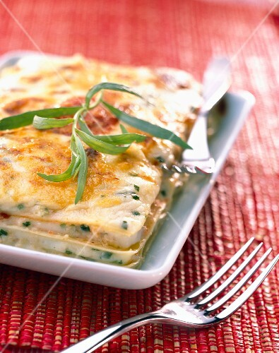 Cheese lasagnes
