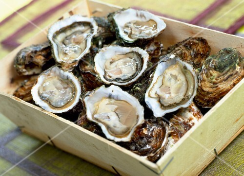 Hamper of oysters
