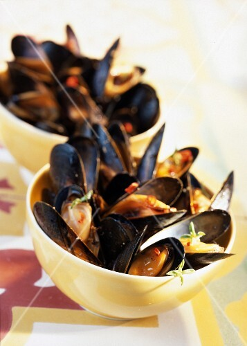 Grilled mussels a la plancha with savory