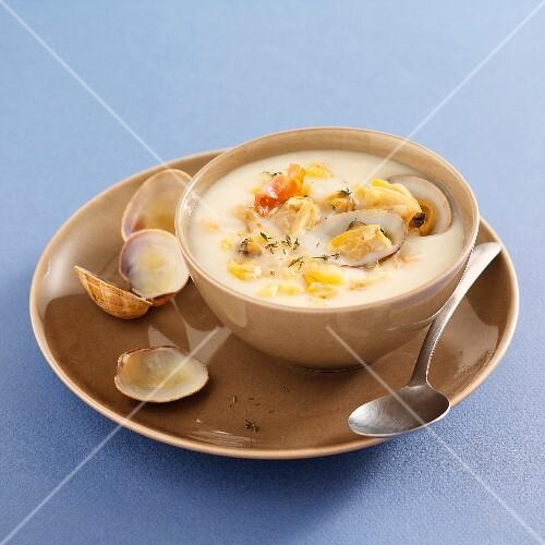 Clam chowder (USA)