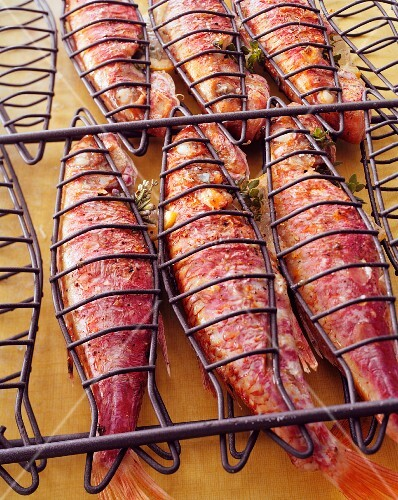 Red mullet in a fish basket