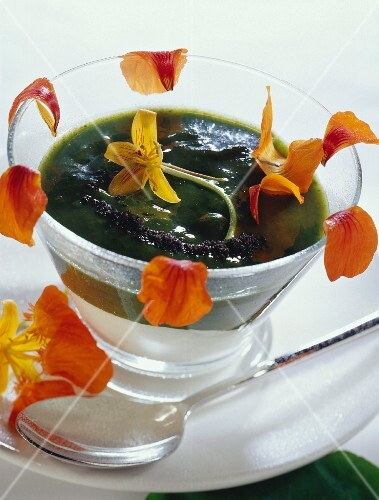 Cold dill and nasturtium soup