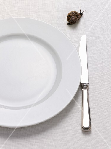 Empty plate with knife and live snail