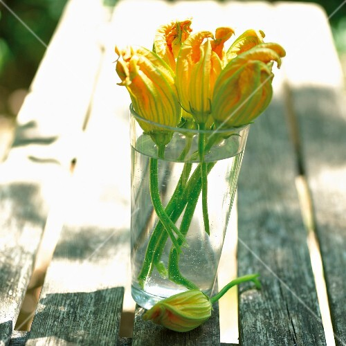 Courgette flowers in a glass of water