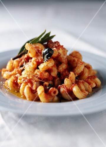 Spiral pasta with tomato,basil and mozzarella sauce