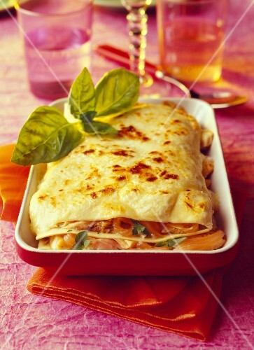 Salmon ,herb,lime and cream lasagnes