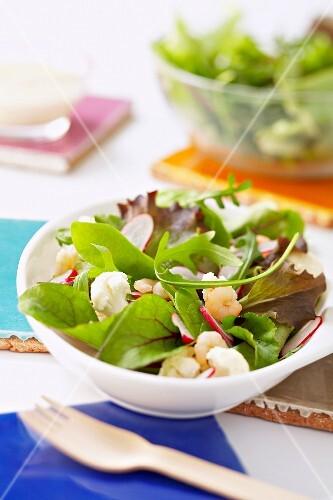 Mesclun, radish, cauliflower and shrimp salad