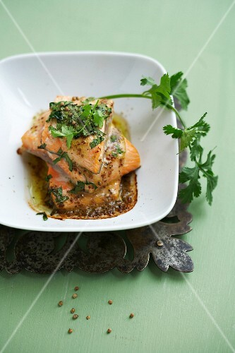 Two pieces of salmon with fresh and dry coriander
