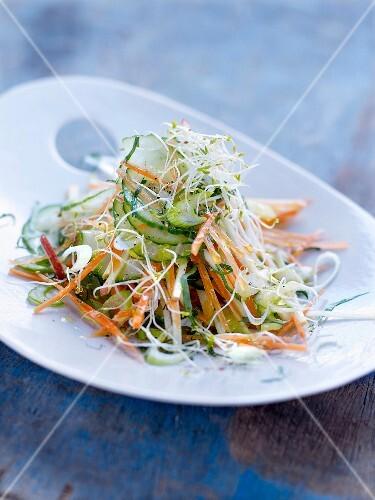 Cucumber, carrot and alfafa salad