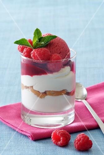 Tiramisu and raspberry sorbet