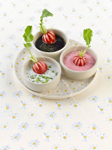 Assorted dips with radishes