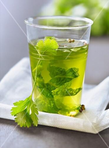 Green cabbage and cilantro detox broth