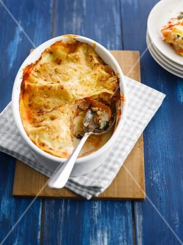 Fish lasagnes