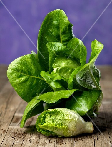 Lettuce leaves and heart