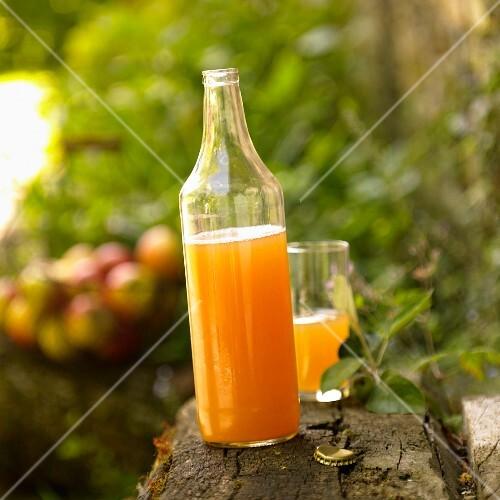 Bottle of homemade apple juice