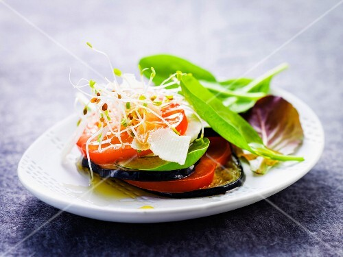 Layered tomato,eggplant and sprout starter