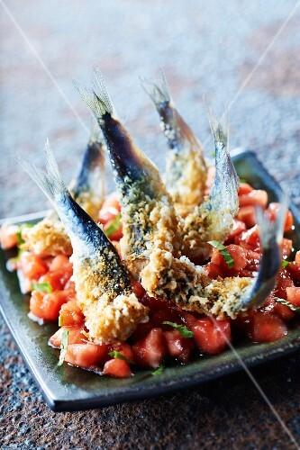 Tomato tartare with sardines in crisp Comté crust