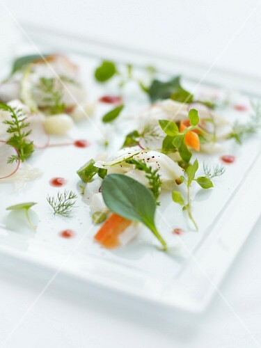 Squid carpaccio