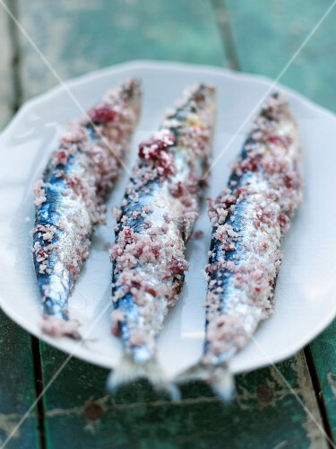 Mackerels in pink salt crust