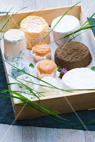 Crate of cheeses