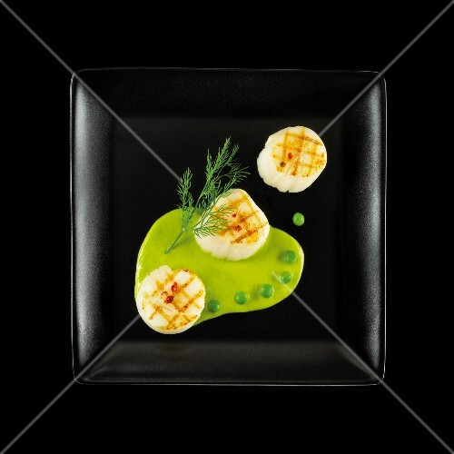Pan-fried scallops with creamy pea sauce on a black background