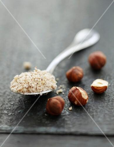 Spoonful of ground hazelnuts and whole hazelnuts