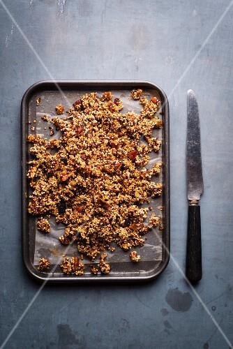 Mixed granola and pecans