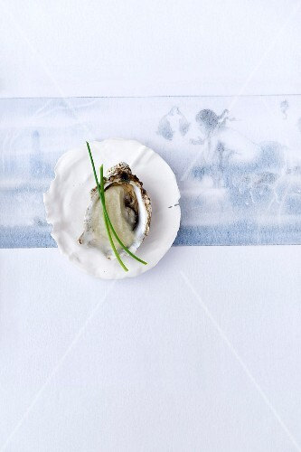 Oyster with celery puree