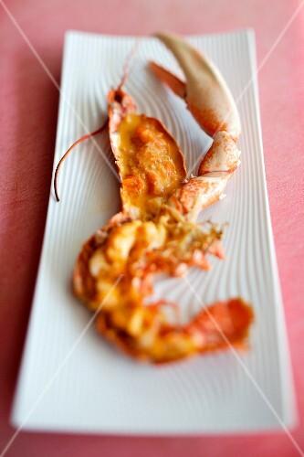 Lobster with Kari gosse