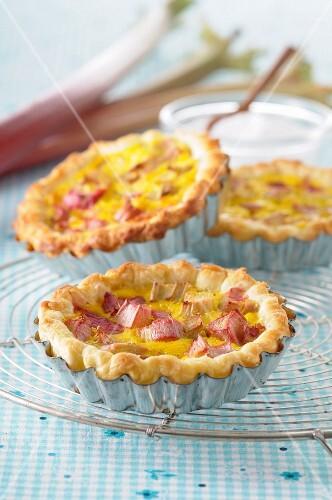 Individual rhubarb pies