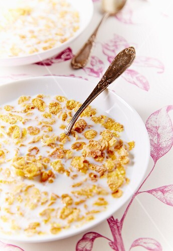 Bowls of cereals with milk
