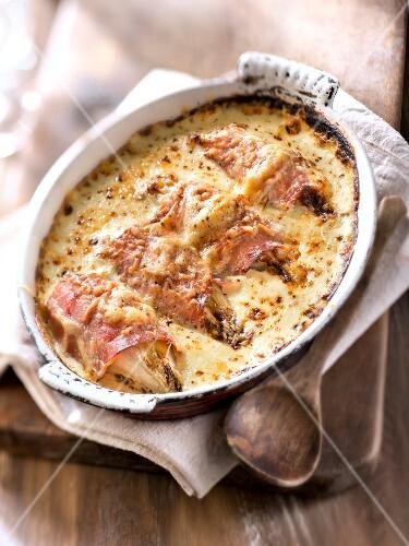 Chicory and ham gratin