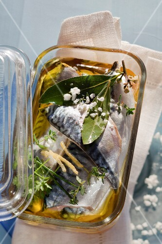 Mackerel in oil with herbs, lemon zest and goat's cream cheese